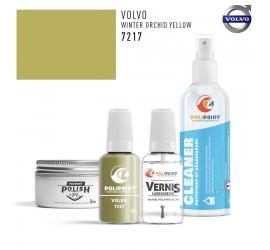 7217 WINTER ORCHID YELLOW Volvo