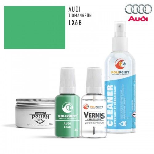 Stylo Retouche Audi LX6B TIOMANGRÜN