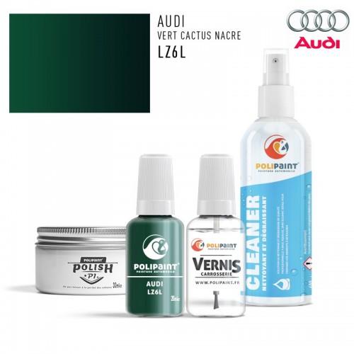 Stylo Retouche Audi LZ6L VERT CACTUS NACRE