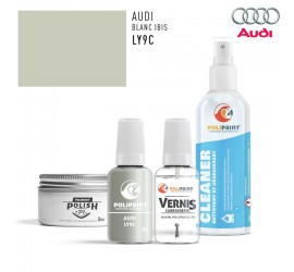 Stylo Retouche Audi LY9C BLANC IBIS