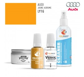 LY1G JAUNE AGRUME Audi
