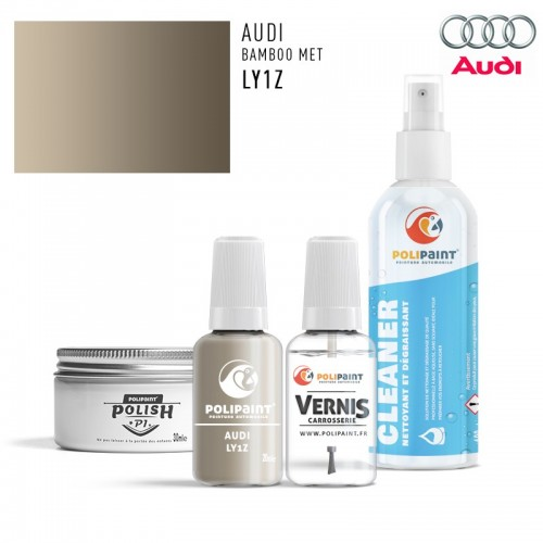 Stylo Retouche Audi LY1Z BAMBOO MET