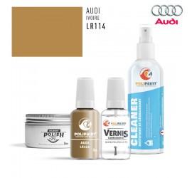 LR114 IVOIRE Audi