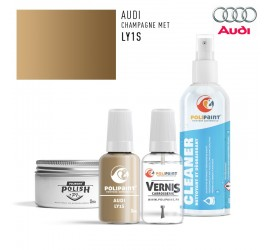 LY1S CHAMPAGNE MET Audi