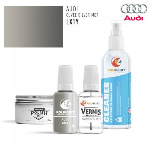Stylo Retouche Audi LX1Y CUVEE SILVER MET