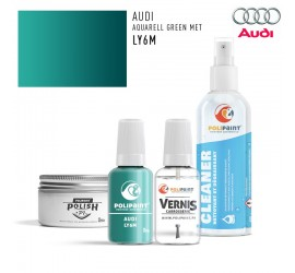 LY6M AQUARELL GREEN MET Audi