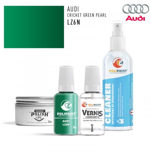Stylo Retouche Audi LZ6N CRICKET GREEN PEARL