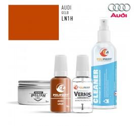 LN1H GELB Audi