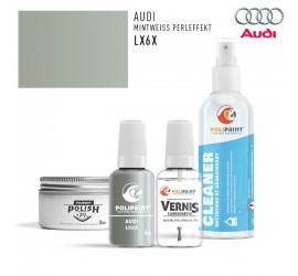 LX6X MINTWEISS PERLEFFEKT Audi