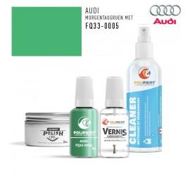 FQ33-0005 MORGENTAUGRUEN MET Audi