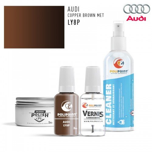 Stylo Retouche Audi LY8P COPPER BROWN MET