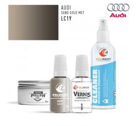 LC1Y SAND GOLD MET Audi