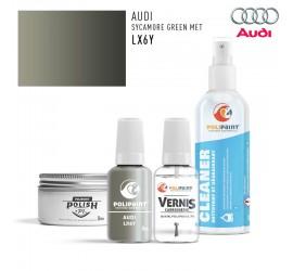 LX6Y SYCAMORE GREEN MET Audi
