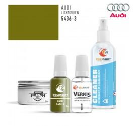 5436-3 LICHTGRUEN Audi