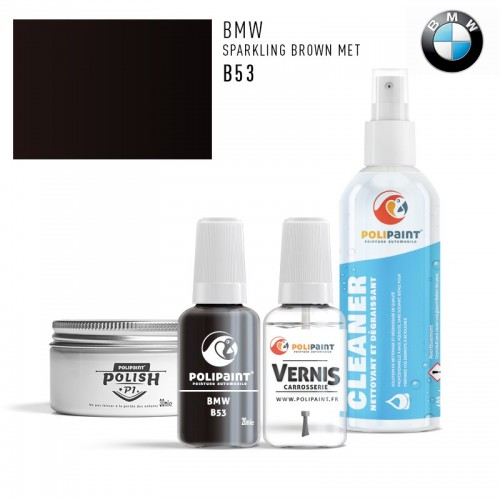 Stylo Retouche BMW B53 SPARKLING BROWN MET