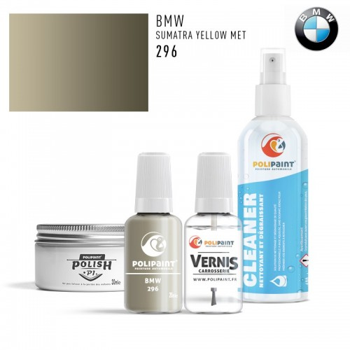 Stylo Retouche BMW 296 SUMATRA YELLOW MET