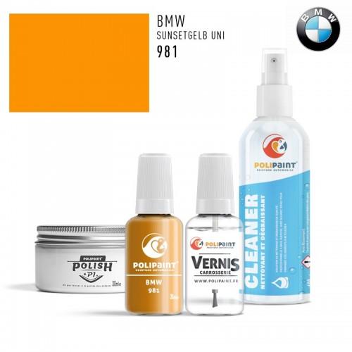 Stylo Retouche BMW 981 SUNSETGELB UNI